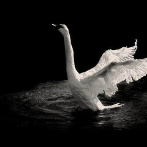 JUPITER FALLS ----Swan Song