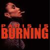 Fierce (Paris is Burning) - Josh Karmin Rework