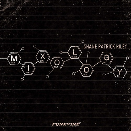Rooney's Groove (original mix) - Shane Patrick Riley