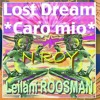 "N ROY feat Leilani ROOSMAN (vocals & lyrics);Lost dream ""Caro mio""mix 2 freedownload"
