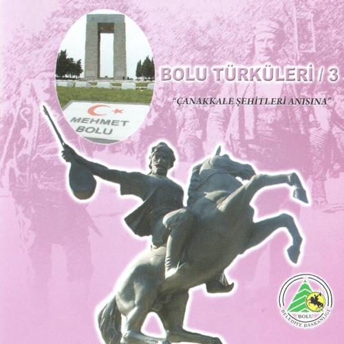 BOLU TÜRKÜLERİ CD 3 - Evleri Var Karşımızda
