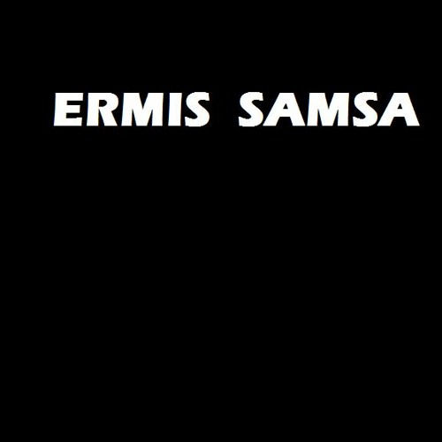Ermis Samsa - Radicals Missed The Plane