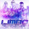 Daddy Yankee - Limbo (Remix) (feat. Wisin & Yandel) Portada del disco