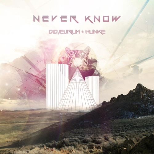 hunkE feat. Didjelirium - Never Know