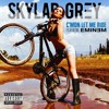 Skylar Grey feat. Eminem - C'Mon Let Me Ride [Brookland Flip]