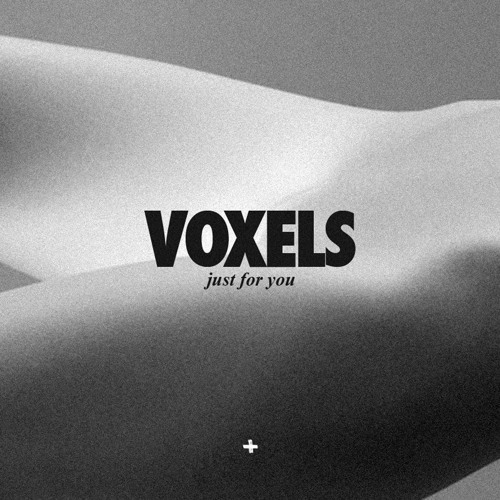 Voxels - Just for You