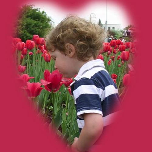 My little Valentine - Milana