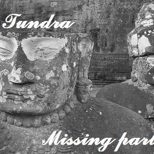 Tundra  - Missing parts (Original mix) [FREE DL]