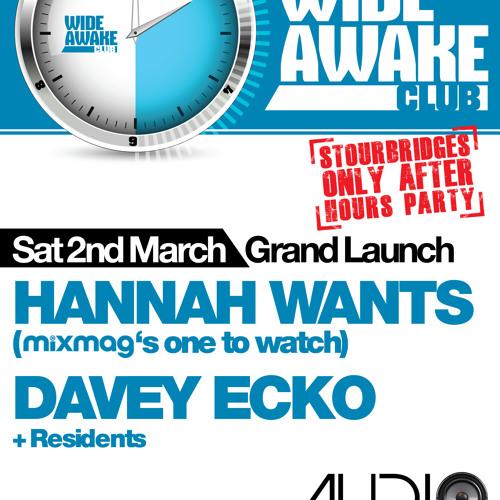 Davey Ecko - Wide Awake Promo