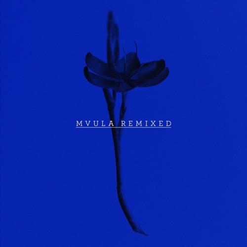 Laura Mvula - Green Garden (S O H N Remix)