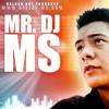 SEVERINA - TARAPANA (DJ MS FEAT. DJ SASA 2013)