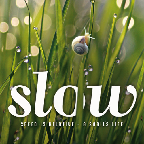 SLOW presents: Plum Village Morning Chant · August 1st 2012