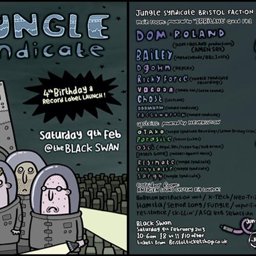 JungleSyndicate Bday mashup set