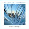 Reg Schwager & David Restivo - Arctic Passage (take 2)