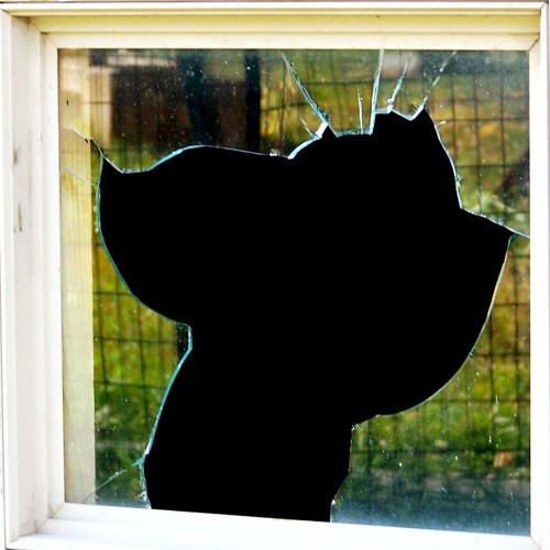 Teenage violence at home