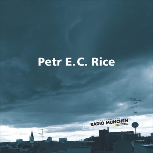 Kandidat B: Petr E.C. Rice - 2. Preis