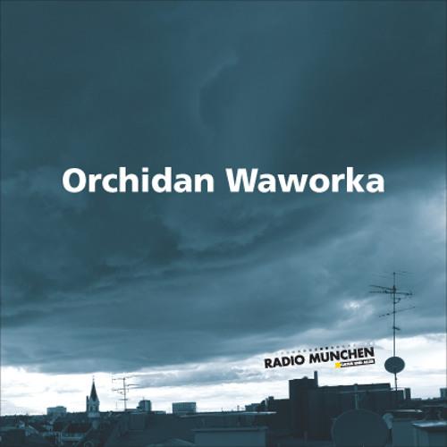 Kandidat C: Orchidan Waworka