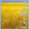 Lee Hyla - Polish folk songs II