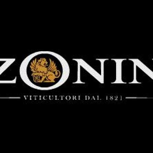 ZONIN' feat. Bad Newz & Copperpot