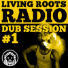 LRR-Dub Session 1