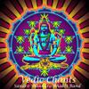 VEDIC CHANTS [electro mantra] Sandro Shankara Bhakti Band live on Ressonar Festival