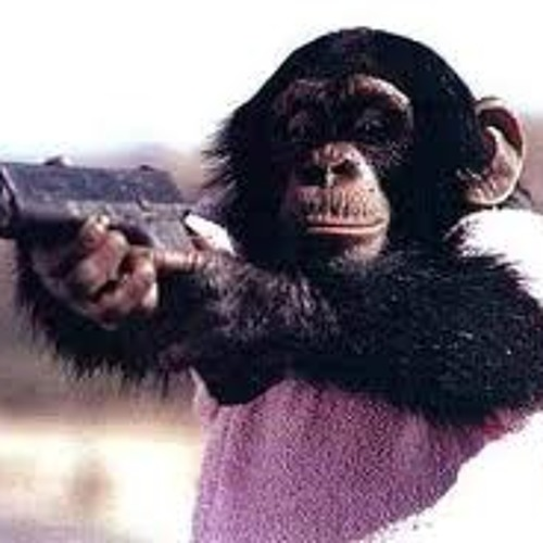 Girl Boner - Monkeys