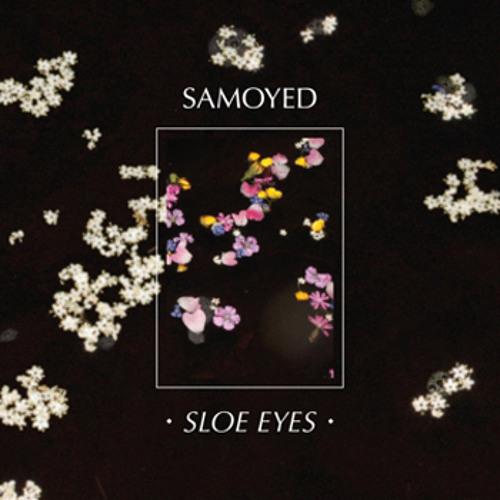 Samoyed - Guts