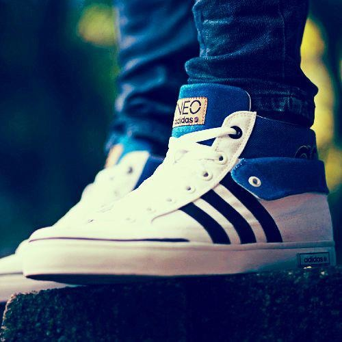 Adidas Shoes Download