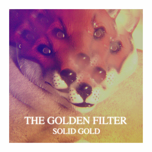 The Golden Filter 'Solid Gold'