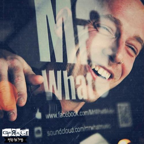 Mr.What - In Da Mix -Promo set Tree of Life Festival!
