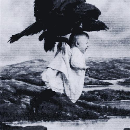 Vulture (On The Dancefloor)