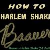 Baauer - Harlem Shake (DJ Just remix)
