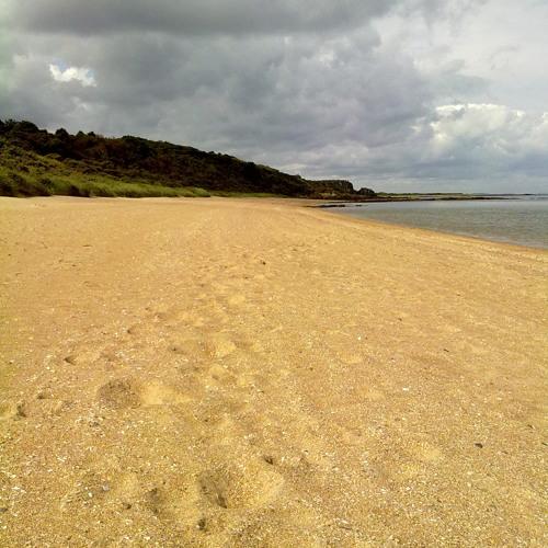 Gullane Beach Chase - Tambay