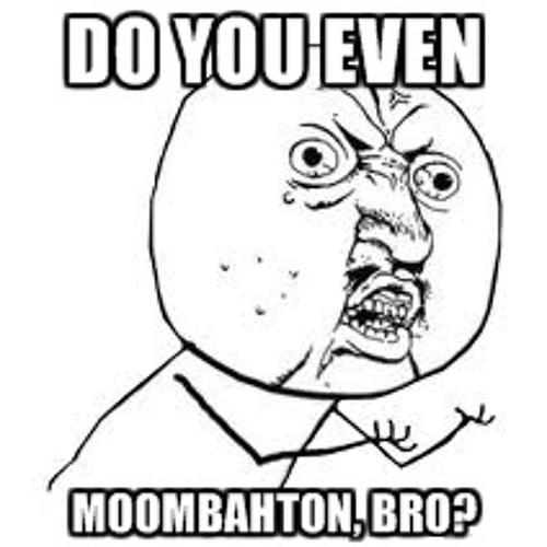 Do you even moombahton, Bro?