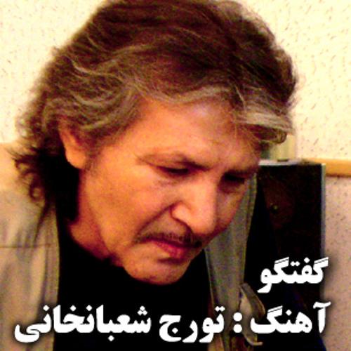 Touraj Shabankhani - Goftegoo