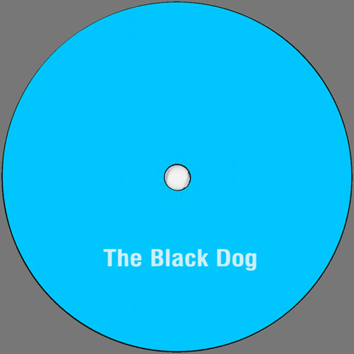 The Black Dog | Council Flat Emptiness