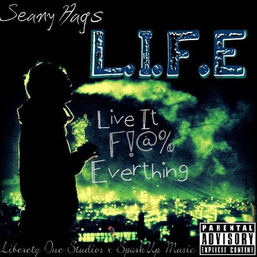 Seany Hags - Riggady Raw