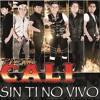 SIN TI NO VIVO REMIX TIERRA CALI BY DJ JOHN