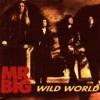 Mr. Big - Wild world cover