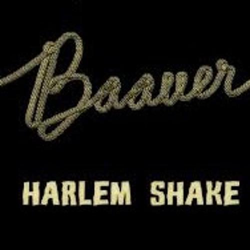 Baauer Vs LMFAO - Sexy Harlem Shake (DJ Ted L Mashup)