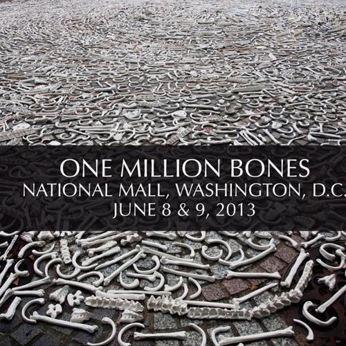 Jennifer Carlson interviews Ames Hawkins about One Million Bones