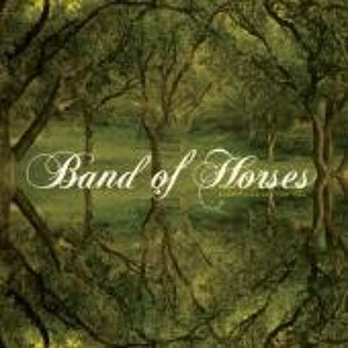 The Funeral (Band of Horses)