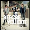 I Like That-Before You Exit Cover