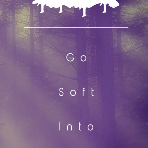 Go Soft Into The Night