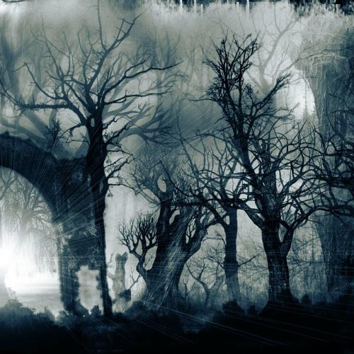 Carlos Grane - Shadow Sequencer (Original Dark Mix)