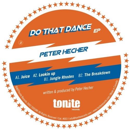 THE BREAKDOWN - Peter Hecher (PH Groove)