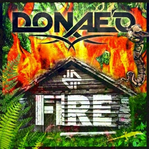 Donaeo - Fire (dj direct Official Remix)