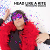 Gimme Shelter (Remix by Head Like a Kite)