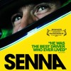 1m1 Senna Theme