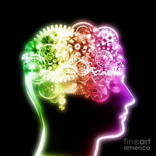 Mr. Niceguy - Normal Brain